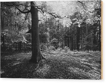 Wood Print featuring the photograph Illumination by Alexander Kunz