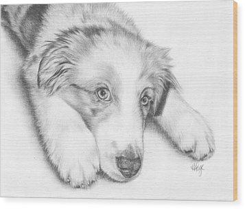 I'm Sorry - Australian Shepherd Puppy Wood Print by Heather Page