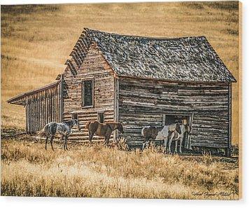 #2204 - Harrison Montana Wood Print