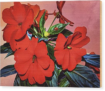 Impatience With Ladybug Wood Print by Diane Schuster