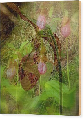 Imperiled Wood Print by Priscilla Richardson