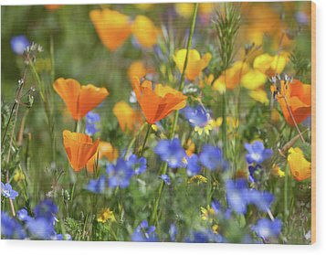 Wood Print featuring the photograph Impressionist Wildflowers by Cliff Wassmann