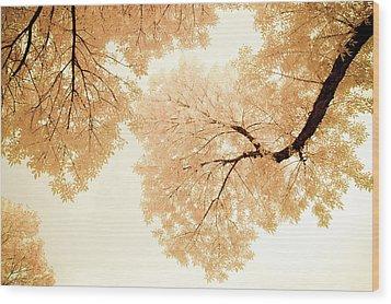 Impressions Of October Wood Print