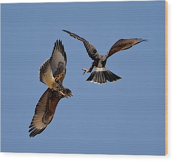 Wood Print featuring the photograph In Flight Challenge H43 by Mark Myhaver