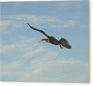 In Flight Wood Print by Marty Koch