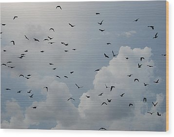 Wood Print featuring the photograph In Flight by Rob Hans
