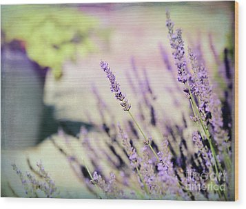 Wood Print featuring the photograph In Love With Lavender by Kerri Farley