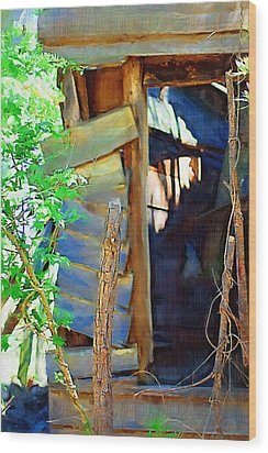 Wood Print featuring the photograph In Shambles by Donna Bentley