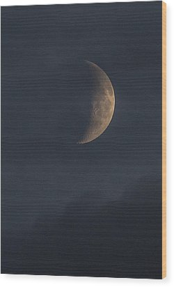 Wood Print featuring the photograph In The Blue Hours by Alex Lapidus