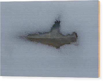 In The Deep Wood Print