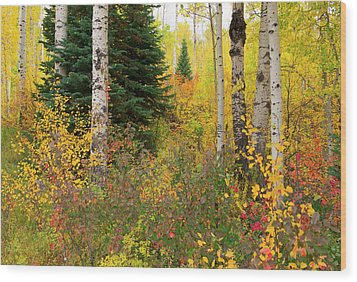 Wood Print featuring the photograph In The Depths Of Autumn Woods by Tim Reaves