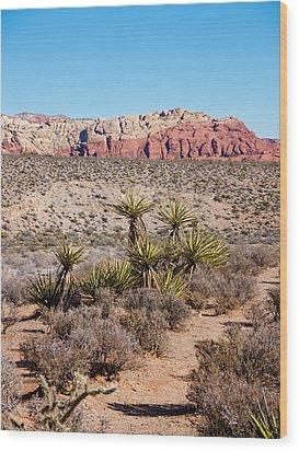 In The Desert Wood Print by Rae Tucker