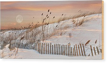 Wood Print featuring the photograph In The Dunes by Robin-Lee Vieira