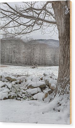 In The Field Wood Print by Bill Wakeley