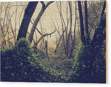 In The Forest Of Dreams Wood Print by Laurie Search