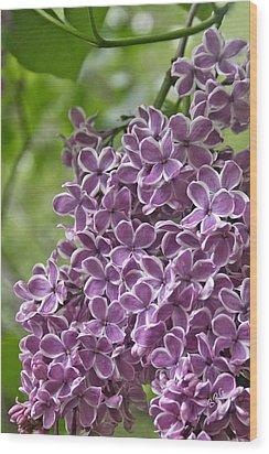 In The Garden. Lilac Wood Print by Ben and Raisa Gertsberg