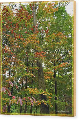 Wood Print featuring the photograph In The Height Of Autumn by Joan  Minchak