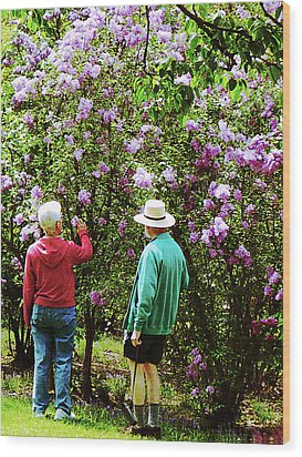 In The Lilac Garden Wood Print by Susan Savad