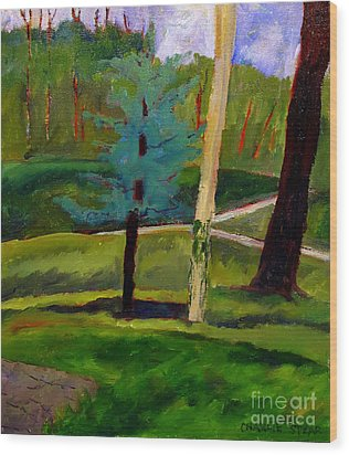 In The Rough Blue Spruce Plein Air Wood Print by Charlie Spear