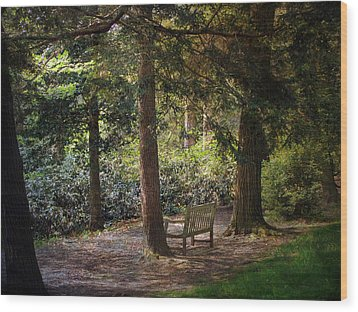 Wood Print featuring the photograph In The Shade by John Rivera