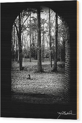 In The Shadows Wood Print by Melissa Wyatt
