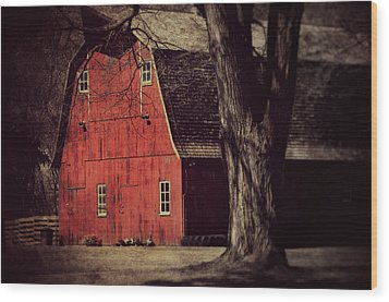 In The Spotlight Wood Print by Julie Hamilton