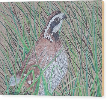 In The Tall Grass Wood Print by Anita Putman