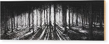 In The Woods 2 Wood Print