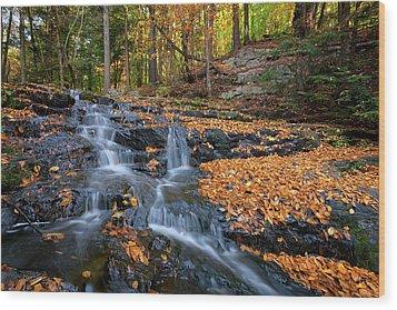 In The Woods Wood Print by Rick Berk