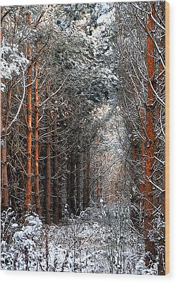 In To The Light Wood Print by Svetlana Sewell