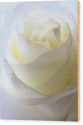 Incandescent Rose Wood Print