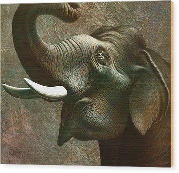 Indian Elephant 3 Wood Print by Jerry LoFaro