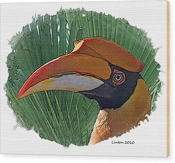 Indian Hornbill Wood Print by Larry Linton