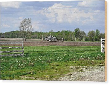 Wood Print featuring the photograph Indiana Farm by John Black
