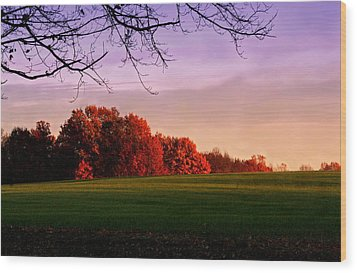 Indiana Sunset Wood Print by Diane Merkle