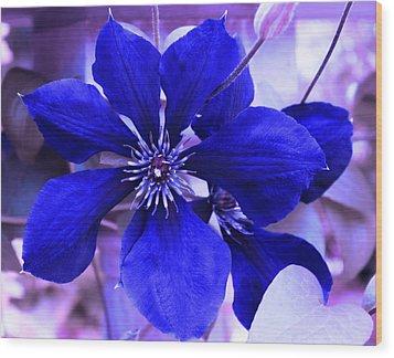 Indigo Flower Wood Print by Milena Ilieva