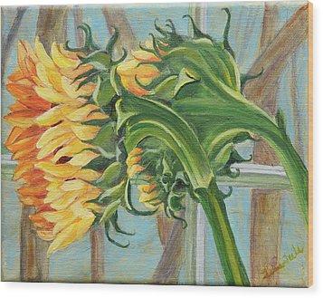 Indoor Sunflowers Wood Print