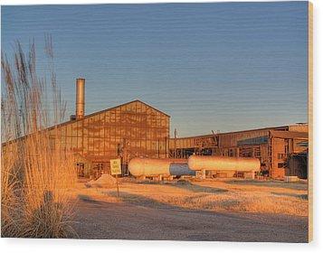 Industrial Site 1 Wood Print by Douglas Barnett