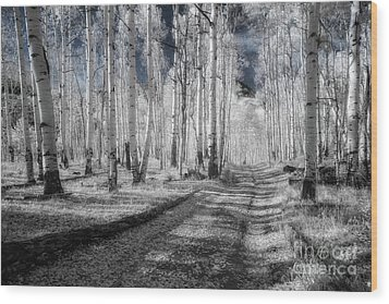 Infrared Aspens Wood Print