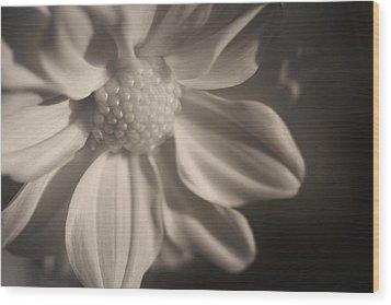 Infrared Mum Wood Print