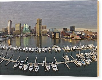 Inner Harbor Wood Print by Elevated Element