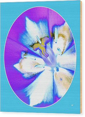 Inner Tulip Abstract 1 Wood Print by Will Borden