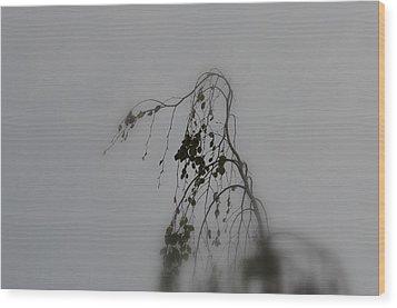 Innner  Mist Wood Print