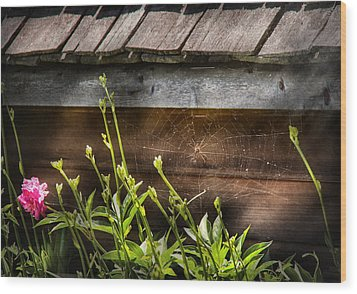 Insect - Spider - Charlottes Web Wood Print by Mike Savad