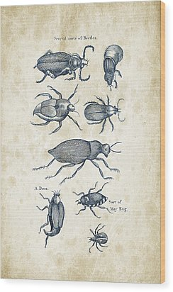 Insects - 1792 - 02 Wood Print by Aged Pixel