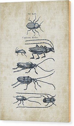 Insects - 1792 - 03 Wood Print by Aged Pixel