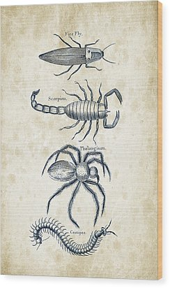 Insects - 1792 - 19 Wood Print by Aged Pixel