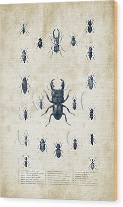 Insects - 1832 - 06 Wood Print