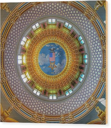 Wood Print featuring the photograph Inside The Dome by Jame Hayes