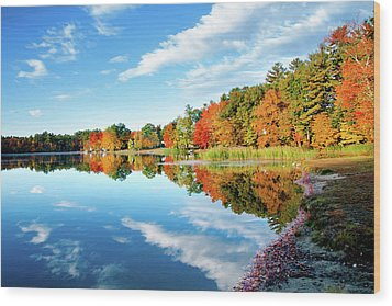Inspiration Wood Print by Greg Fortier